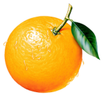 anti-cancer-fruit-orange