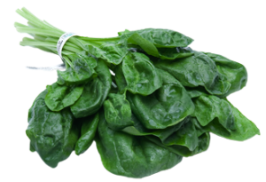 Spinach-food-to-prevent-cancer